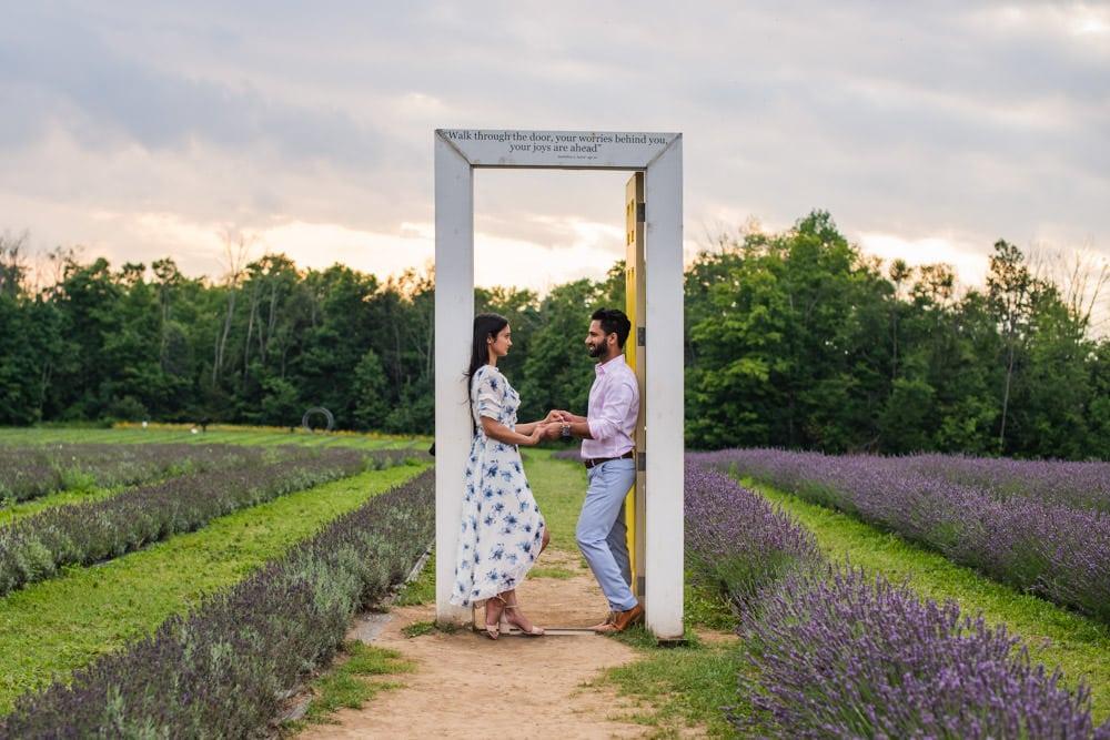 Terre Bleu Lavender Farms, Toronto engagement shoot